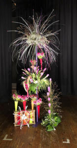 Class-4-Firework-Fiesta---2nd-Place-June-Eggleton